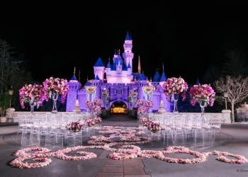 Sleeping-Beauty-Castle-Disneyland_cc570a767b388fdf7f555da0de9b51d6